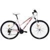 Bicicleta DHS TERRANA 2722